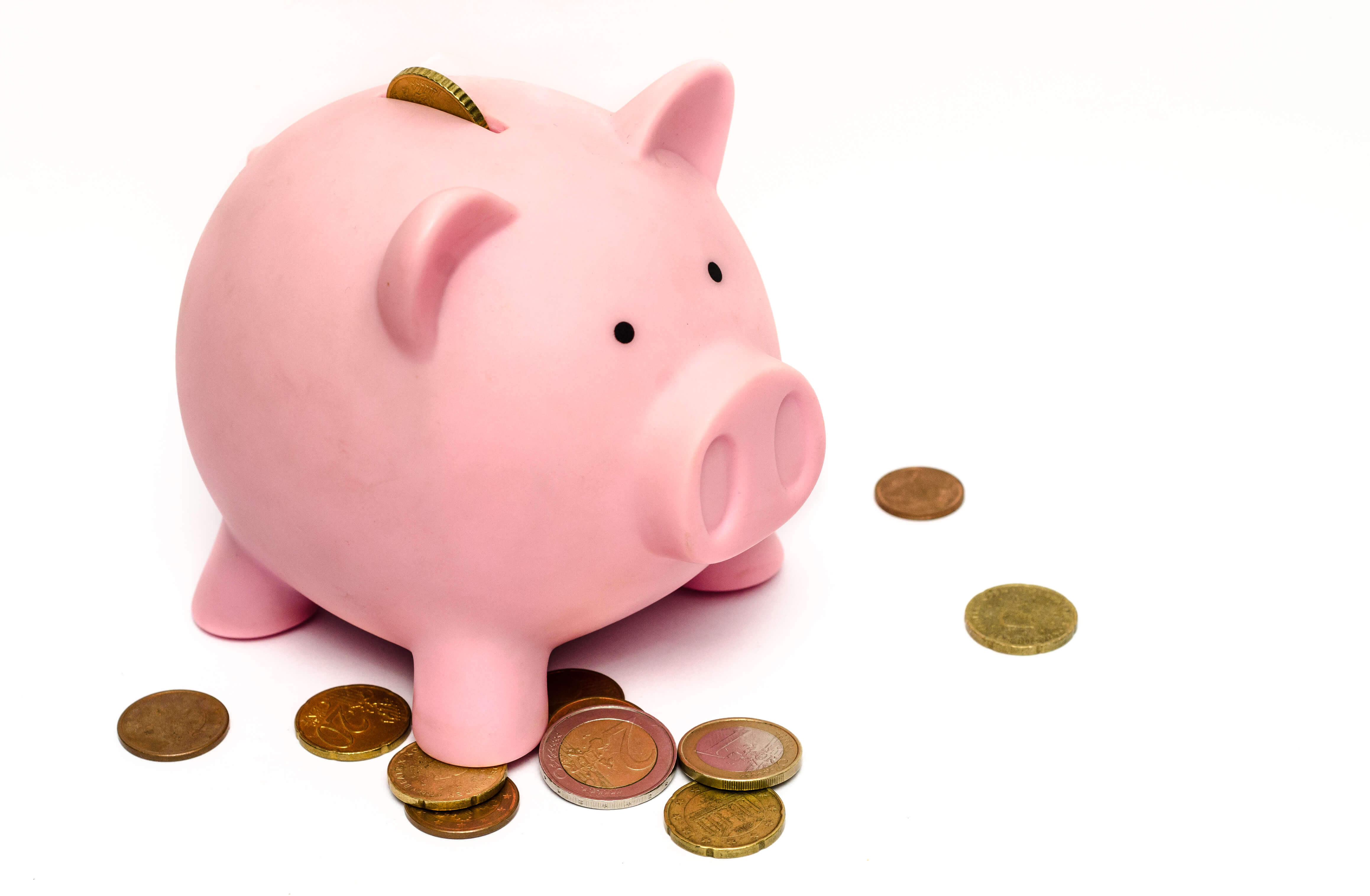 Banish Annual Maintenance Fees from Your IT Budget image..